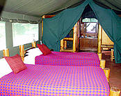 Mara siana springs tent with double bed
