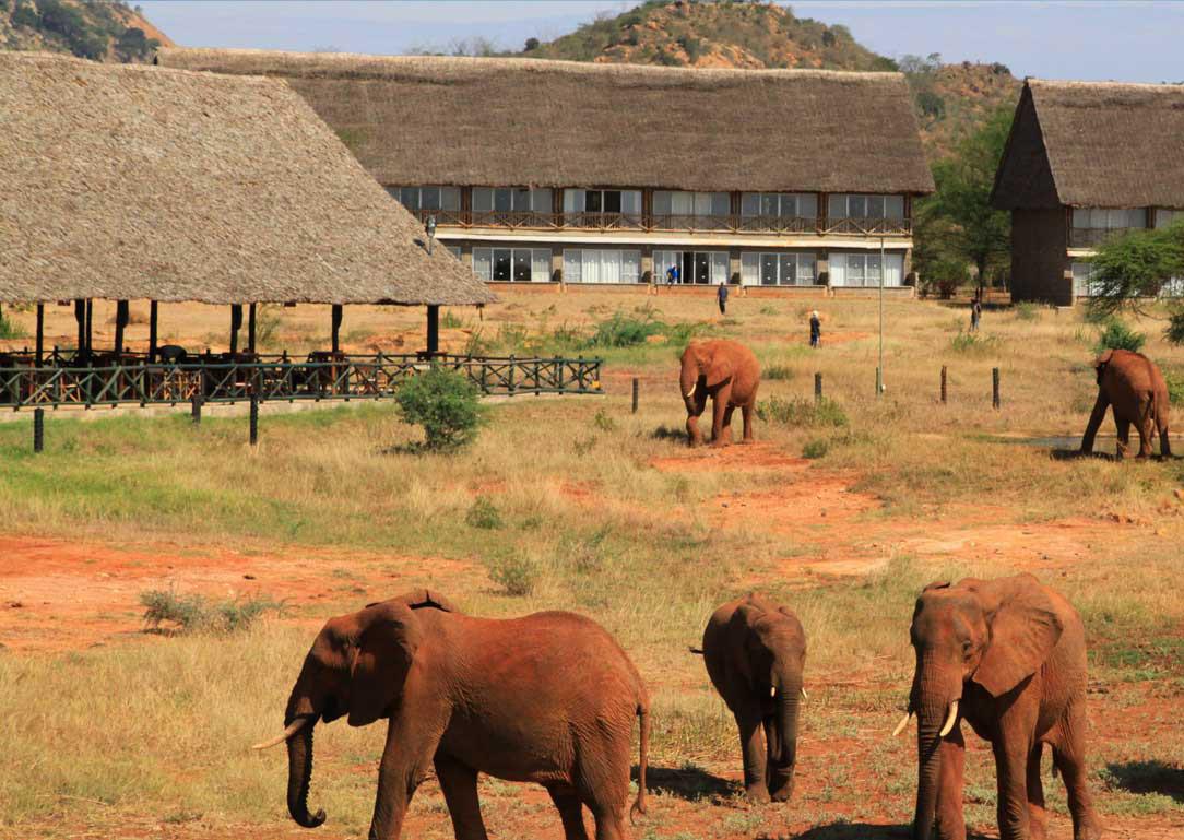 Manyatta tented camp tsavo east 12
